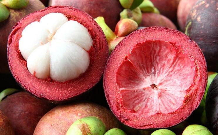 Kulit manggis bisa mengobati kanker payudara
