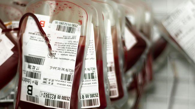 kantong darah