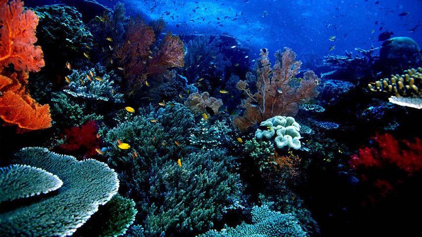 tempat terindah di Indonesia