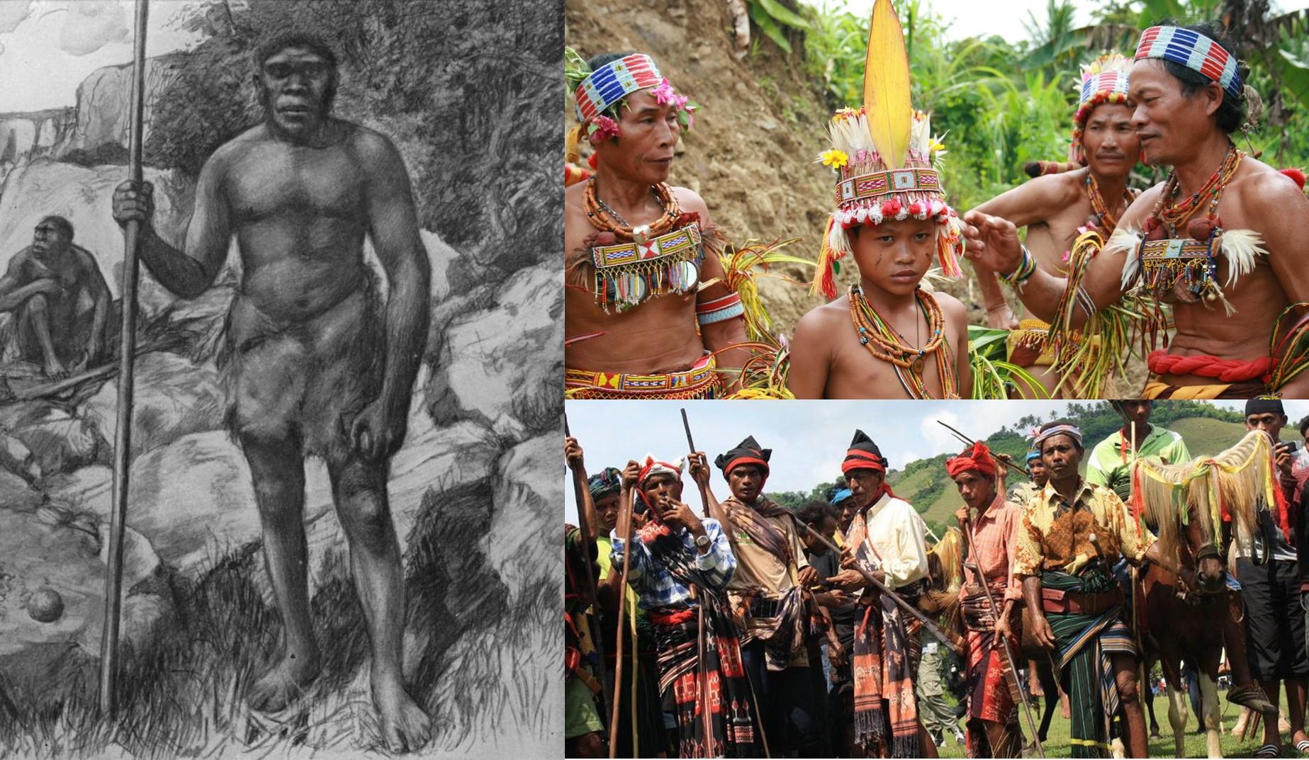 penduduk indonesia asli
