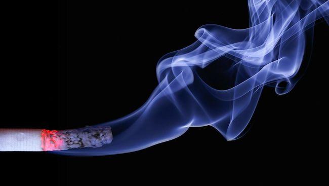 Karbon monoksida dalam rokok berbahaya untuk kesehatan jantung