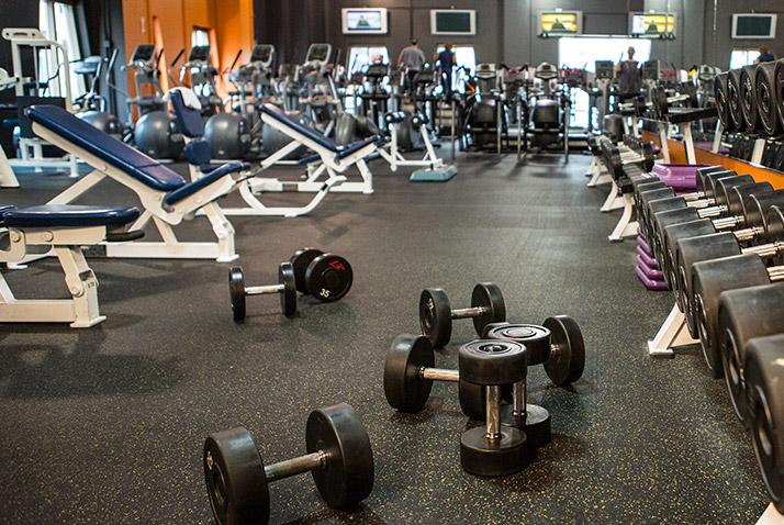 fitness bagi pemula