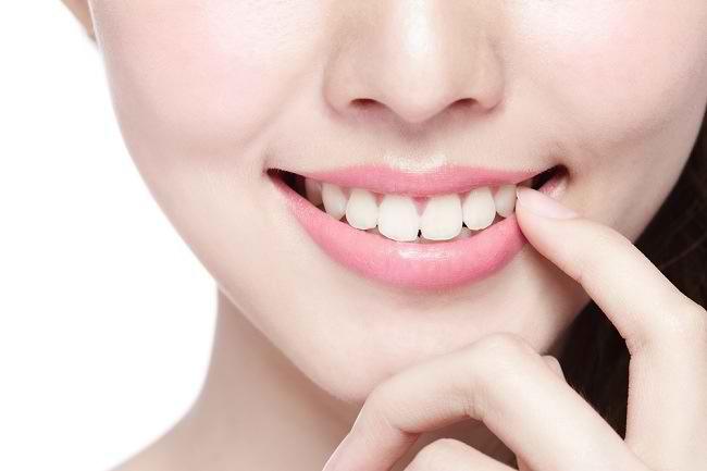 fungsi gigi tariing