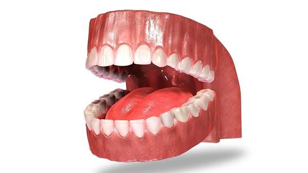 gigi taring 4