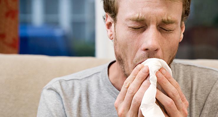 Jenis-jenis influenza