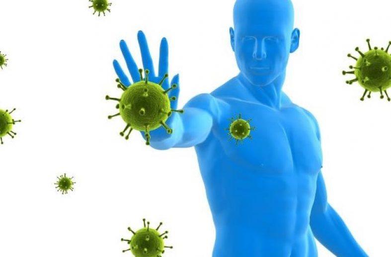 cara kerja sistem imunitas