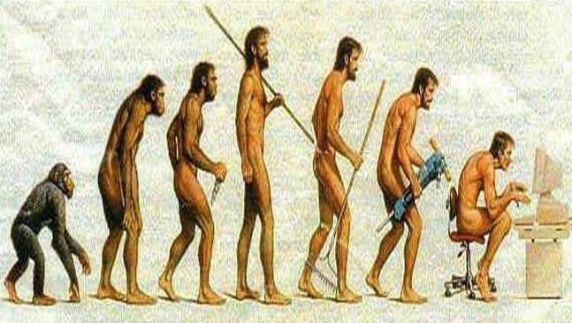 manusia purba evolusi