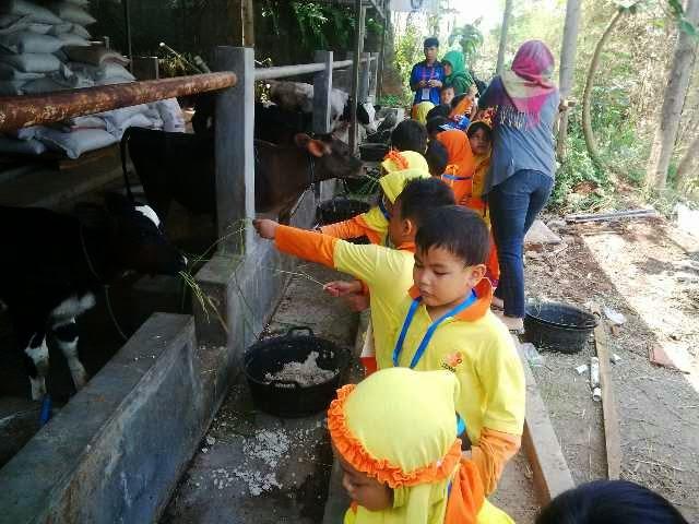 Cibubur Garden Diary Jakarta